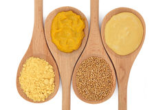 Mustard Selection Stock Image