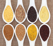 Mustard Selection Royalty Free Stock Photography