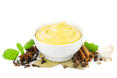 Mustard with spices royalty free stock image