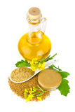Mustard   in various appearance Stock Image