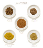 Mustards Collection  Stock Photography