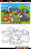 Mustelids animals cartoon coloring book Royalty Free Stock Photo