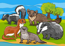 Mustelids animals cartoon illustration Royalty Free Stock Images