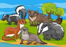 Mustelids animals cartoon illustration Royalty Free Stock Images