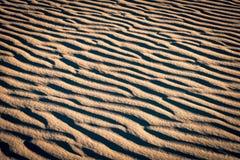 Muster auf roten Sanddünen Lizenzfreie Stockfotos