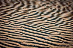 Muster auf roten Sanddünen Lizenzfreie Stockbilder