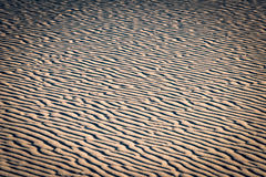 Muster auf roten Sanddünen Lizenzfreies Stockfoto
