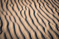 Muster auf roten Sanddünen Stockbilder