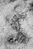 Muster der Feinkohle im seichten Wasser Stockbild
