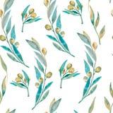 Muster der grünen Olive des Aquarells Olivgrünes branche Stockfoto