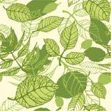 Muster der grünen Sommerblätter lizenzfreie abbildung