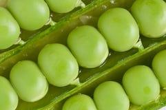 Muster der Hülsen der grünen Erbsen Stockfoto