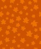 Muster der Herbstblätter Stockbild