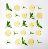 Muster der Minze und der Zitrone Nahrungsmittelhintergrund mit Zitrusfrucht Tadellose Blätter, Zitronenscheiben lokalisiert auf w stockfotos