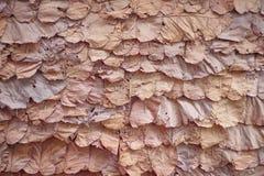 Muster der Natur auf Wandhintergrund, überlagern getrocknete Blätter masern traditionellen thailändischen Entwurf lizenzfreie stockbilder