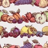 Muster der reifen Frucht und der Beeren Stockbilder