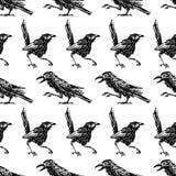 Muster der Skizzen der Krähen und der Elster Lizenzfreie Stockfotografie