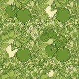 Muster der Tomatenniederlassung in einem Garten Grün und Weiß Lizenzfreies Stockfoto