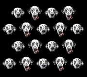 Muster des dalmatinischen Hundes lokalisiert auf Schwarzem Stockfotos