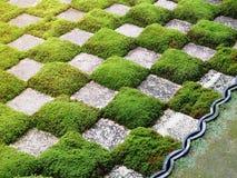 Muster des grünen Grases und des Felsens Lizenzfreie Stockfotos