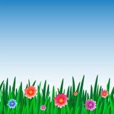 Muster des Grases mit Blumen und Himmel Lizenzfreie Abbildung