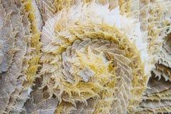 Muster des Kerzewachses Stockbild