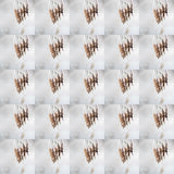 Muster des natürlichen Laubs umfasst mit Frost Lizenzfreie Stockfotografie