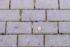 Muster des Ziegelsteinblockes auf Gehweg, Dreieckblock ist Unterschied, Zickzack blockiert Beschaffenheit Stockfoto