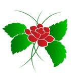 Muster einer Blume eine Rose Lizenzfreies Stockfoto