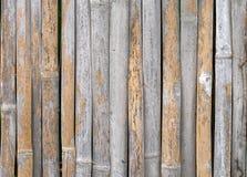 Muster eines Bambusses Lizenzfreies Stockfoto