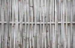 Muster eines Bambusses Stockbild