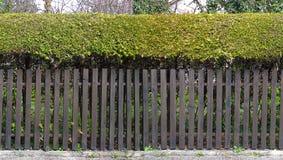 Muster-Gartenzaun HD nahtloser Stockbilder