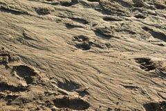 Muster gezeichnet auf den Sand Lizenzfreies Stockfoto