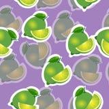 Muster kalken Sie und Blätter und slises selbe Größen auf purpurrotem Hintergrund Transparenzkalk Lizenzfreie Stockfotos