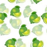 Muster kalken Sie und Blätter und slises selbe Größen auf weißem Hintergrund Transparenzkalk Lizenzfreie Stockfotos