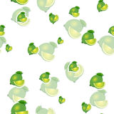 Muster kalken Sie und verschiedene Größen der Blätter auf weißem Hintergrund Transparenzkalk Stockfoto