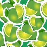 Muster kalken Sie und verschiedene große Größen der Blätter auf grünem Hintergrund Lizenzfreie Stockfotografie