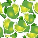 Muster kalken Sie und verschiedene große Größen der Blätter auf weißem Hintergrund Stockfotos