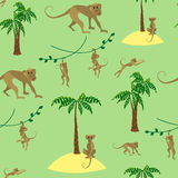Muster mit Affen Stockfoto