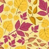 Muster mit Blättern auf einem Gelb Stockfoto