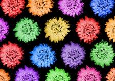 Muster mit Blumen auf dunklem Hintergrund Lizenzfreie Stockfotos