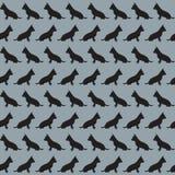 Muster mit den Schattenbildern des Hundes Stockbild