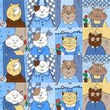 Muster mit Katzen in den Fenstern Lizenzfreies Stockfoto