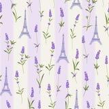 Muster mit Lavendelblumen lizenzfreie abbildung