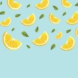Muster mit Orangen Lizenzfreie Stockfotos