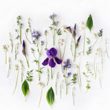 Muster mit purpurroter Iris und Maiglöckchen blüht auf weißem Hintergrund Lizenzfreies Stockfoto