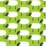 Muster mit Schafen Lizenzfreies Stockfoto