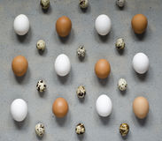 Muster mit vielen verschiedenen Arten Eier Lizenzfreie Stockfotos