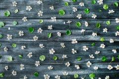 Muster mit weißen Blumen und Niederlassungen auf altem Retro- Holztischhintergrund Lizenzfreies Stockfoto