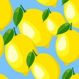 Muster mit Zitrone und Blättern Stockbild